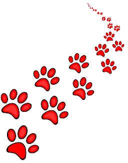 Lost Paws Rescue of Texas - 7000+ DFW Dogs and Cats Adopted