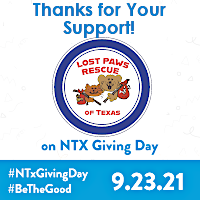 Lost Paws Rescue of Texas - Thanks for Your Support on N Texas Giving Day 2021
